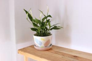 Maceta artesanal con trazos rosas, azules y amarillos, realizada artesanalmente en loza blanca, y con plato contenedor de agua